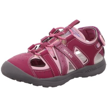 Geox Slipper pink