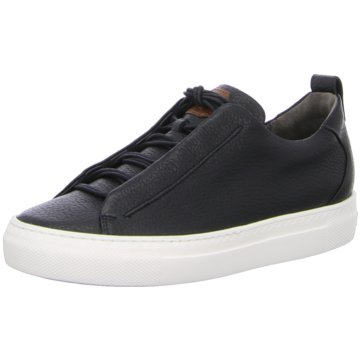 Paul Green Sneaker Low4554 schwarz