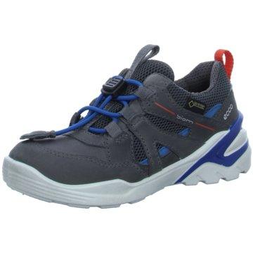 Ecco Sneaker LowBiom Voyage grau