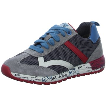 Geox Sneaker Low grau