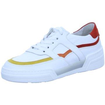 Gabor Sneaker Low weiß