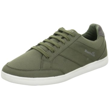 Boxfresh Sneaker Low oliv