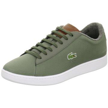 Lacoste Sneaker Low grün