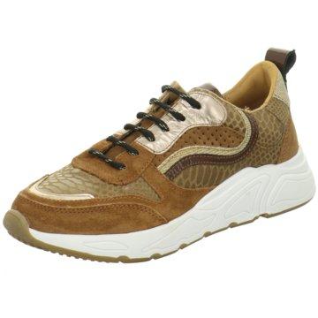 PS Poelman Top Trends Sneaker braun