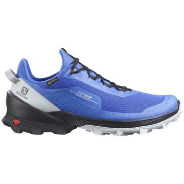 Salomon Outdoor SchuhCROSS OVER GTX - L41286000 blau