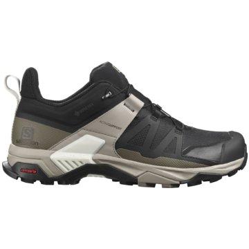 Salomon Outdoor SchuhX ULTRA 4 GTX BLACK/VINKAK/V - L41288100 schwarz