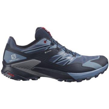 Salomon TrailrunningWINGS SKY GORE-TEX - L41386100 blau