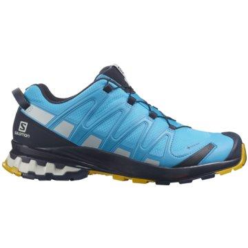 Salomon TrailrunningXA PRO 3D V8 GTX HAWAIIAN OC - L41386600 blau