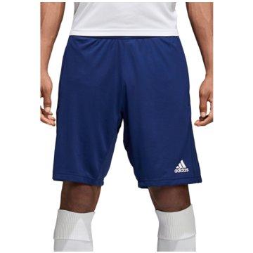 adidas FußballshortsCON18 TR SHO - CV8381 blau