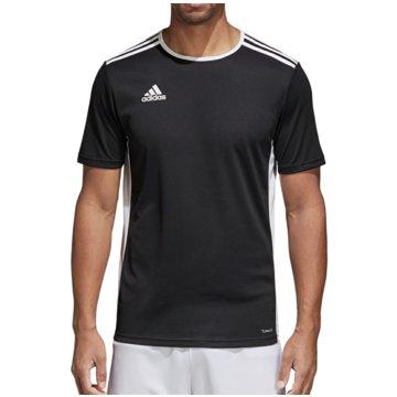adidas FußballtrikotsENTRADA 18 JSY - CF1035 schwarz