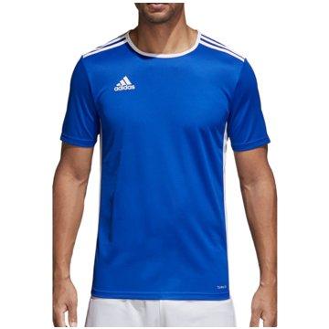 adidas FußballtrikotsENTRADA 18 JSY - CF1037 blau