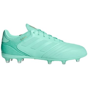adidas Nocken-SohleCopa 18.2 FG grün
