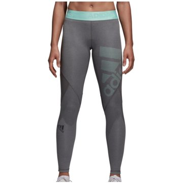 adidas TightsAlphaskin Sport Tight Women grau