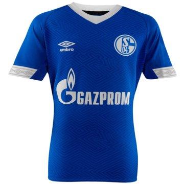 FC Schalke 04 Home Jersey 2018/2019 blau