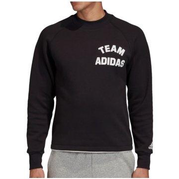 adidas SweatshirtsVRCT Crew Sweatshirt schwarz
