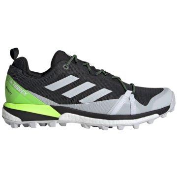 adidas Outdoor SchuhTerrex Skychaser LT Boost GTX schwarz