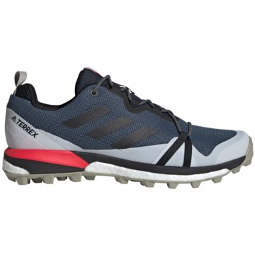 adidas Outdoor SchuhTerrex Skychaser LT Boost GTX grau