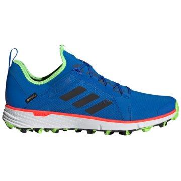 adidas Outdoor SchuhTerrex Speed GTX blau