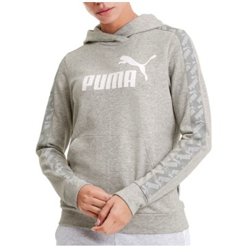 Puma HoodiesAmplified Training Hoody Women grau