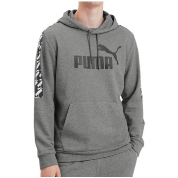 Puma HoodiesAmplified Training Hoody grau