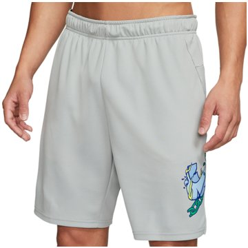 Nike kurze SporthosenDry Training Goliath Shorts grau