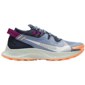 Nike RunningPEGASUS TRAIL 2 - CK4309-401 blau