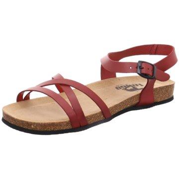 Indigo Offene Schuhe rot