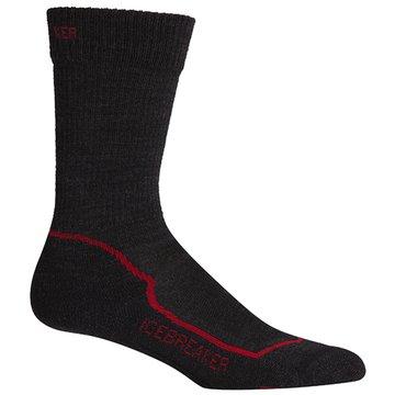 Icebreaker Socken & Strumpfhosen grau