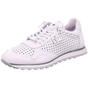 e228eb80fb2dd5 Cetti Schuhe jetzt im Online Shop günstig kaufen