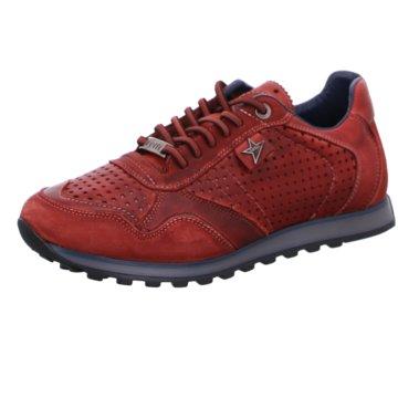 Cetti Sportlicher SchnürschuhSneaker -