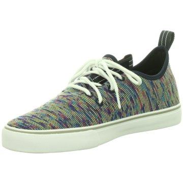 Project Delray Sneaker Low bunt