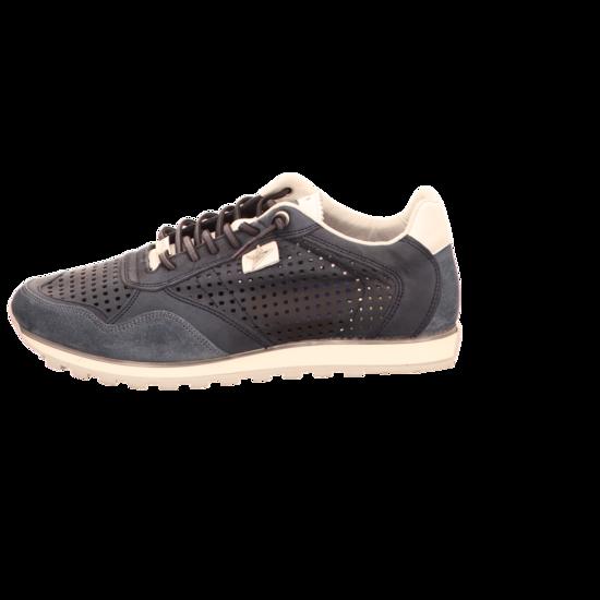 Cetti Sneaker Low