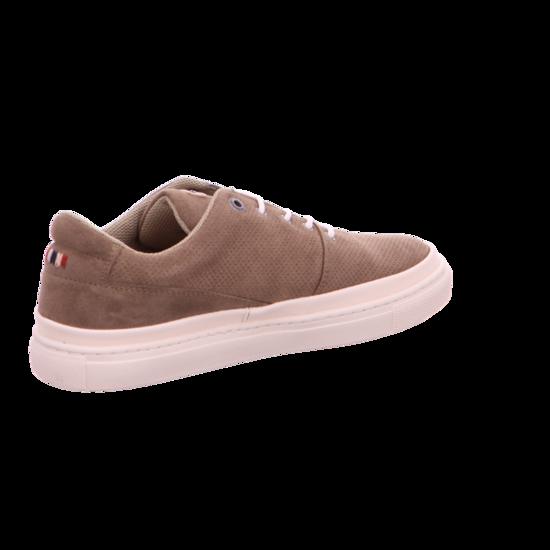 16833624 King N23 N23 N23 Sneaker Niedrig von Napapijri--Gutes Preis-Leistungs-, es lohnt sich 8a80ce