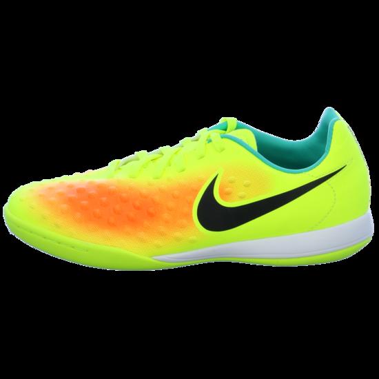 Nike Trainings und Hallenschuhe